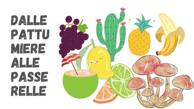 Fruits Collage... Moda sostenibile: dagli scarti alimentari alle passerelle   ockstyle